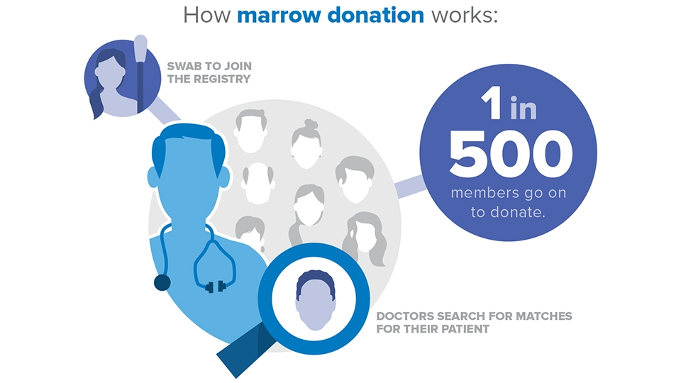 How marrow donation works_2013